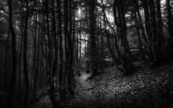 Voyage en noir et blanc 21